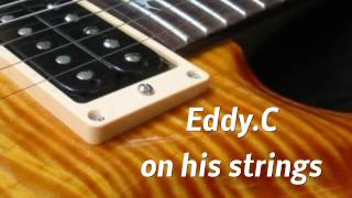 Eddy Chatelin on his strings