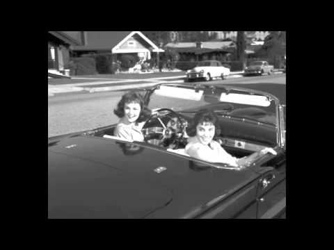 Shelley Fabares - Lost Summer Love