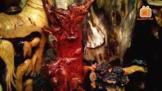 Bộ sưu tập Gỗ Sưa Đỏ Quý l Cây Gỗ Huỳnh Đàn Đỏ l Dalbergia Tonkinensis Prain