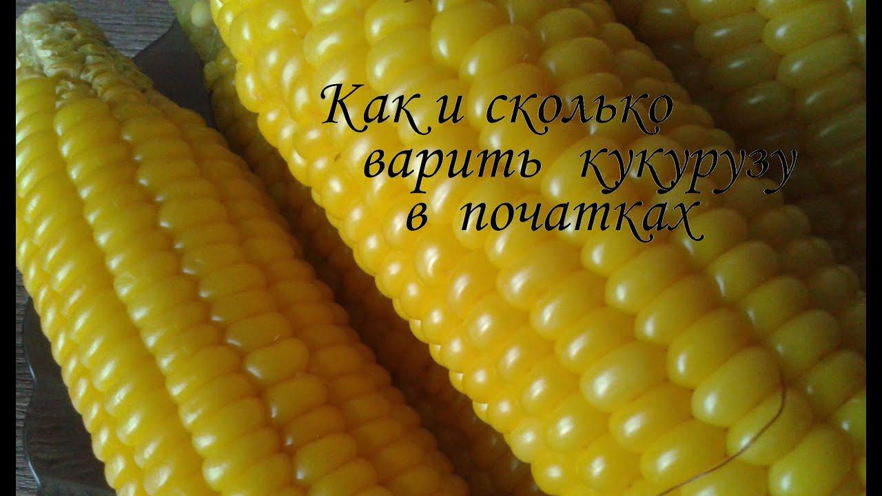 Как правильно и сколько варить молочную кукурузу