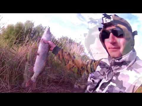 Щука после икромёта. Жор крупной Щуки на карьере #Рыбалка #Казахстан #Астана