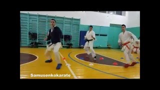 2. Karate training - 2016