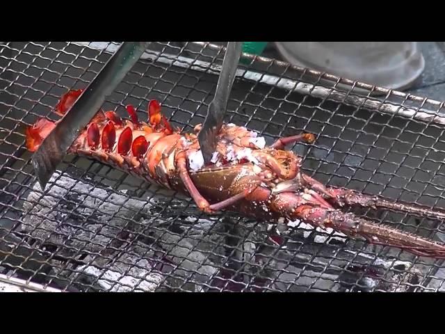 志摩の体験【第29話】浜島の磯体験施設・海ほおずきで伊勢海老釣り体験!! さて結果はいかに???