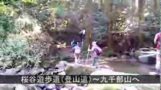 筑紫郡那珂川町の紹介