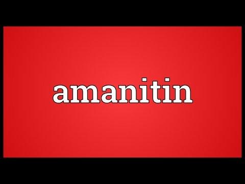 Header of Amanitin