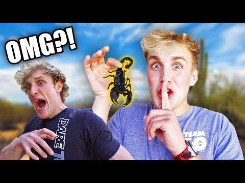 THIS PRANK ALMOST MADE LOGAN CRY!! *revenge*