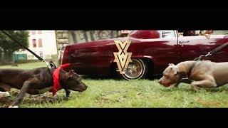 XV - Pour Du Cash (Clip Officiel)