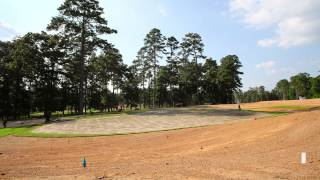 Sprigging Hole #15