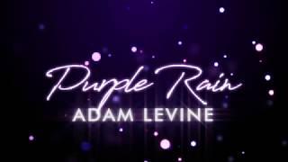 Adam Levine - Purple Rain (Lyrics)