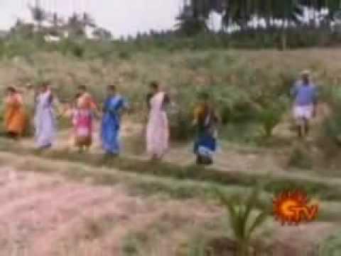 Chidambaram Natyanjali video