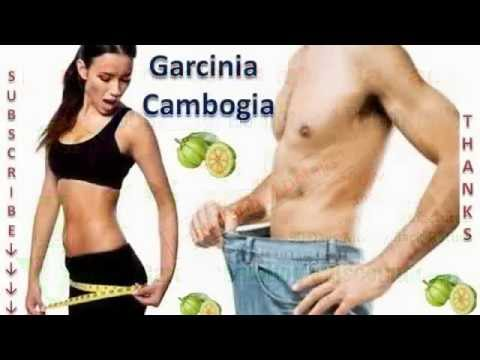 Garcinia Cambogia Extract Review   Results And Side Effects - Pure Garcinia Cambogia Extract