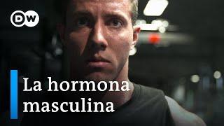 Testosterona -  La fuerza motriz de los hombres | DW Documental