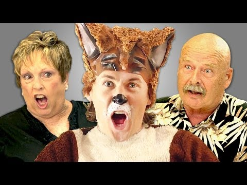 ELDERS REACT TO YLVIS - THE FOX