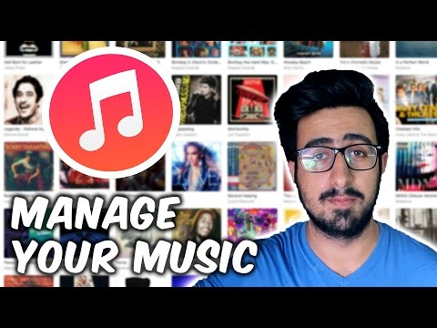 How To Organize And Manage Your Music Library!