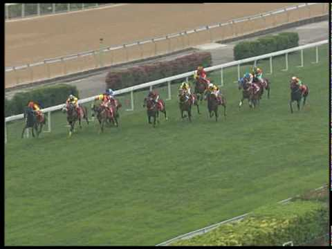澳門打吡預賽2010(三級賽) / Macau Derby Trial 2010 (Group 3) Video
