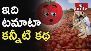 టమాటా కన్నీటి కి కారణాలేంటి? hmtv Special Focus On Tomato Farmers Problems and Solutions