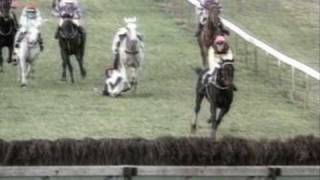 Horse Racing Accidents