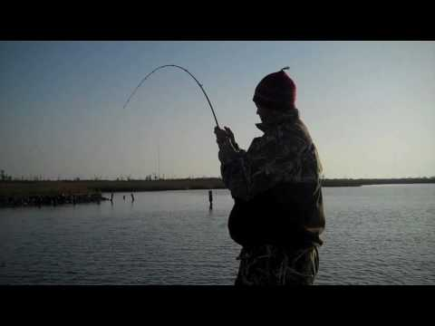 brown lures devil eye hopedale louisiana redfish