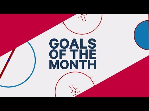 November's NHL goals of the month: Matthews, Tavares and Ovechkin take centre stage