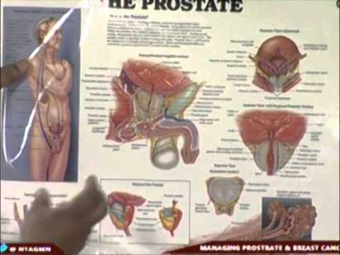 Managing Prostate And Breast Cancer On Good Morning Nigeria