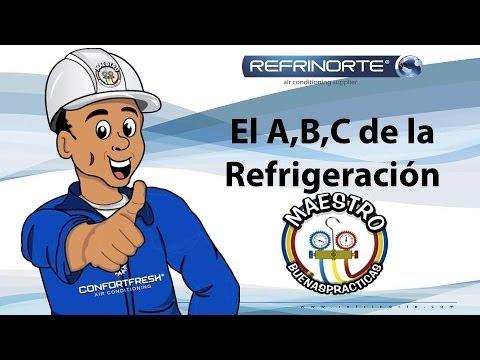Conceptos basicos, ciclo de refrigeracion y sus principales componentes (Capitulo 1 )