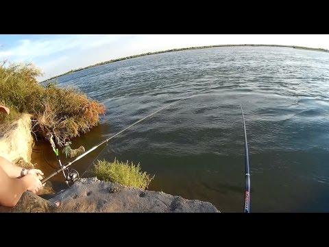 Классная рыбалка на Или! Рыба, каракурт, ящер) И супер настроение)))