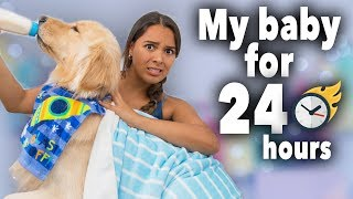 24 Hours Treating My Dog Like a Baby (cute!)