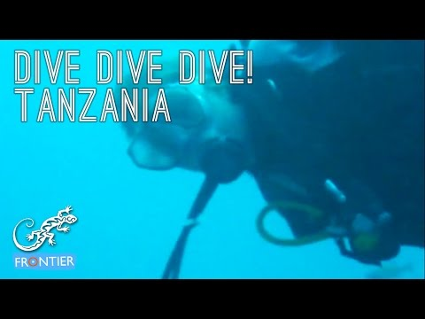 Amazing footage of what you could be up to on our diving projects in Tanzania.