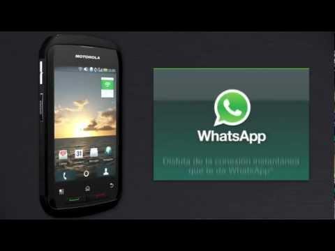 Cómo instalar WhatsApp en tu Motorola