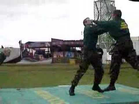 Royal Marines unarmed combat demonstration Image 1