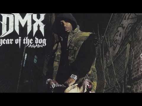 DMX - We in here