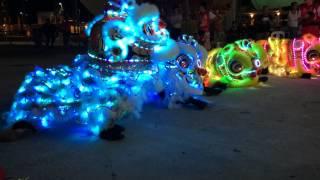 2014 君龍壇庆祝张公圣君千秋 - LED Lion Dance