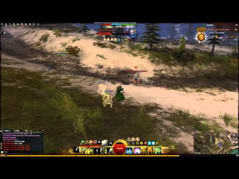 GW2 Ranger Solo WvW - Spirits!