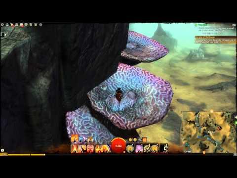 Guild Wars 2 - Triumph Plaza Vista Point (Straits of Devastation) (PC)