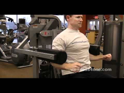 Lateral Raise Machine Image 1