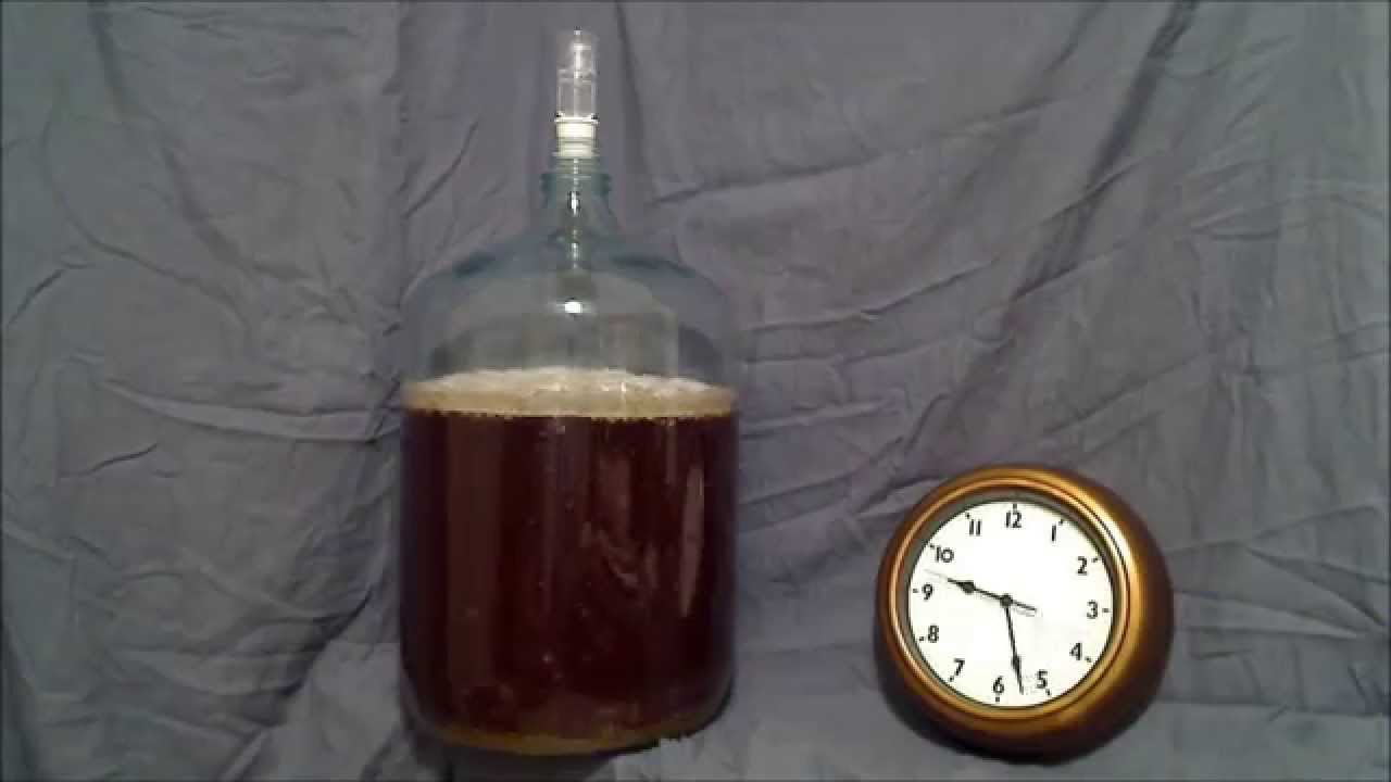 Beer Fermentation Time Lapse Youtube