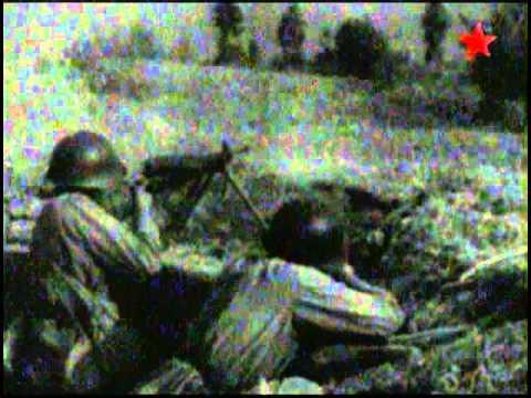 Пулемёт Дягтерёва. Оружие ХХ века