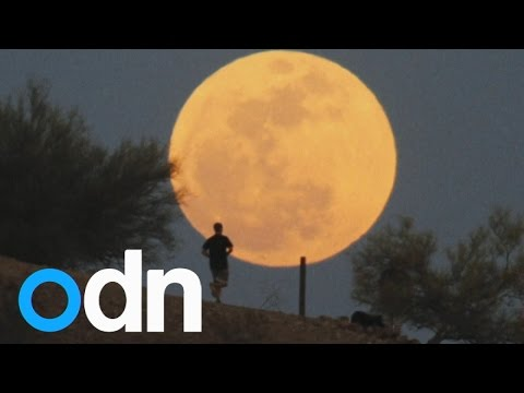Supermoon 2014: Giant moon lights up sky across the globe