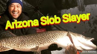 Pike Ice Fishing - Arizona Pike Slayer