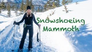 Snowshoeing Mammoth | Eastern Sierras