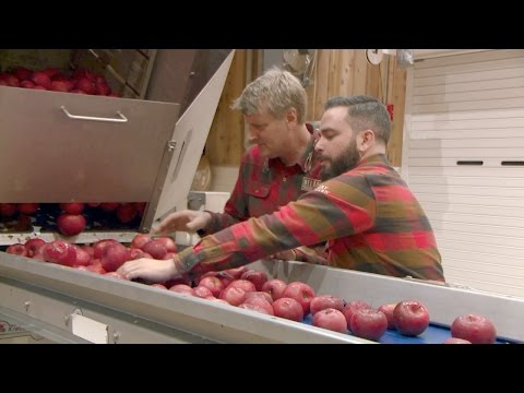 Turning Apples into Hard Cider