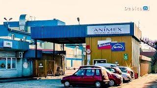 Ponad 320 osób do zwolnienia. Jest decyzja - Animex do likwidacji.