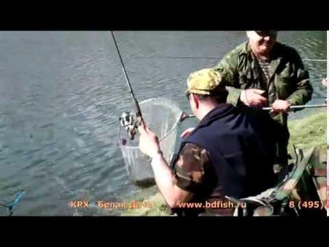 александр рыжов ловля форели