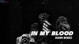 Download Lagu [Vietsub+Kara] In My Blood - Shawn Mendes Gratis STAFABAND