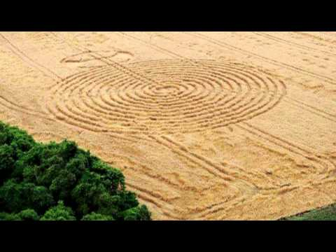 Latest crop circles: Ipuacu, Santa Catarina, Brazil - 2 November 2013