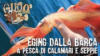 25 GUDOTERROR - Eging dalla barca (con sorpresa) per pescatori della domenica