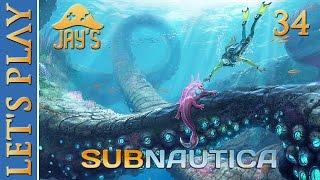 [FR] Let's Play Subnautica : Survie en eaux troubles - Episode 34