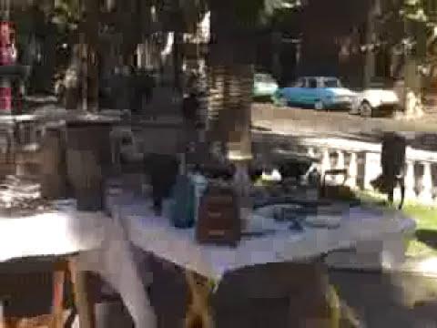 Mercado callejero de antiguedades en Mendoza