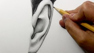 Drawing Time Lapse: Ear (Frontal View)