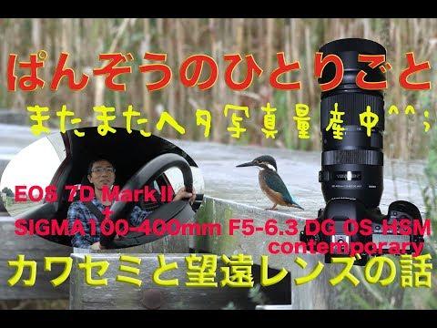EOS7D MarkⅡ+SIGMA100-400mmF5-6.3DG OS HSM・カワセミと望遠レンズの話・ぱんぞうのひとりごと